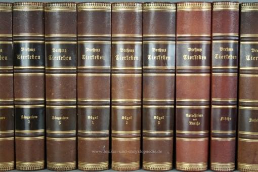 Brehms Tierleben 3. Auflage, 10 Bände, Chromolithographien, 1890-1896