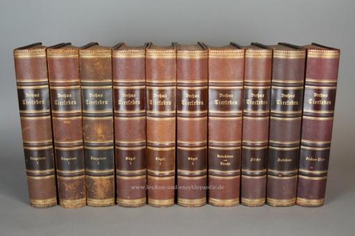 Brehms Tierleben 3. Auflage, Einzel-Band, Chromolithographien, 1890-1900