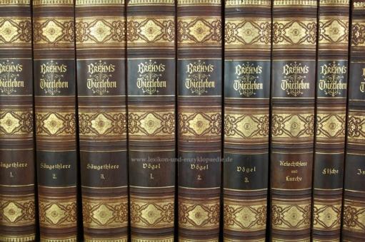 Brehms Thierleben / Tierleben 2. Auflage Kolorirte (kolorierte) Ausgabe, 10 Bände, 1882-1884