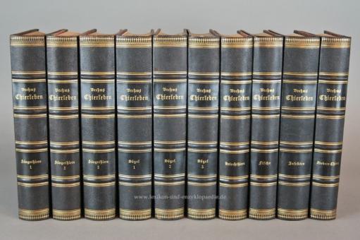 Brehms Thierleben / Tierleben 2. Auflage Kolorirte (kolorierte) Ausgabe, 10 Bände, 1882-1886