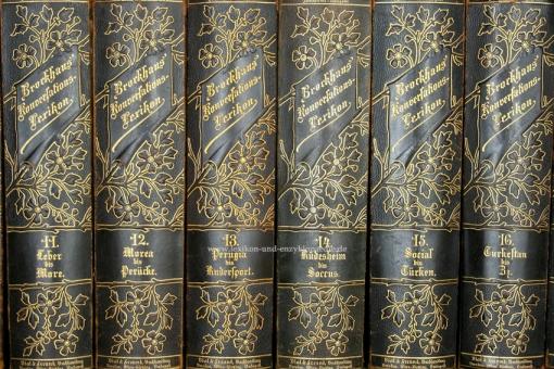 Brockhaus Konversations-Lexikon 14. Auflage, 17 Bände, 1893-1897, Bial & Freund