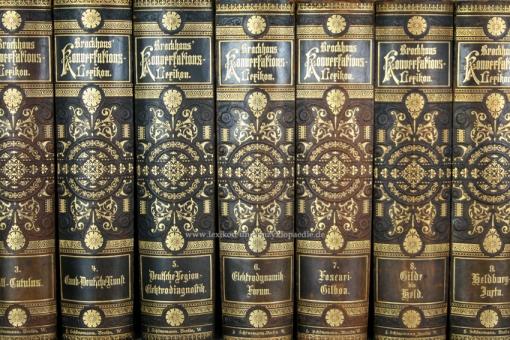 Brockhaus Konversations-Lexikon 14. Auflage, 16 Bände, 1892-1895, Schönemann