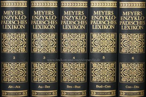 Meyers Enzyklopädisches Lexikon 9. Auflage, 25 Bände (A-Z) Ganzleder, selten | Nr. 265
