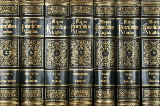 Meyers Konversations-Lexikon 4. Auflage, Einzel-Band, Meidinger