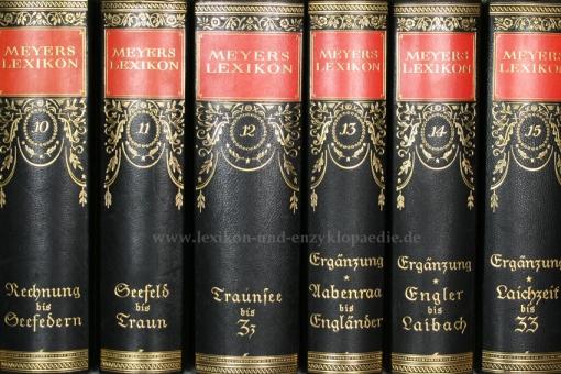 Meyers Lexikon 7. Auflage, Einzel-Band