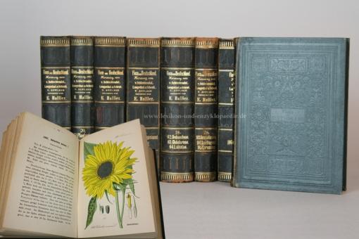 Schlechtendal, Flora von Deutschland 5. Auflage, 31 Bände, Tafeln, 1880-1888