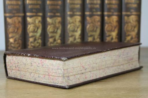 lexikon und enzyklop228die pierers universallexikon der
